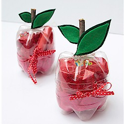 Apple Gift Boxes Craft