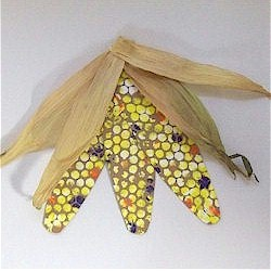 Bubble Wrap Indian Corn - Kids Crafts