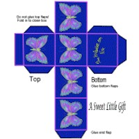 Butterfly Gift Box Craft