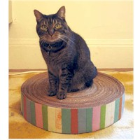 Recycled Cardboard Kitty Pad - Kids Crafts