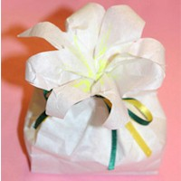 Easter Lilly Treat Bag Craft