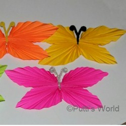 Folded Paper Butterfly Craft