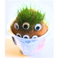 Grow A Grass Head Monster - Kids Crafts