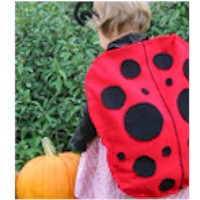 Ladybug Halloween Costume - Kids Crafts