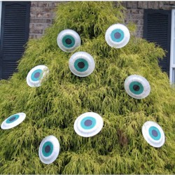 Monster Eye Decoration - Kids Crafts