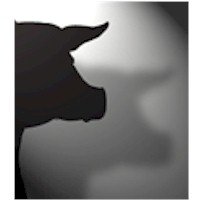Pig Shadow Puppet - Kids Crafts