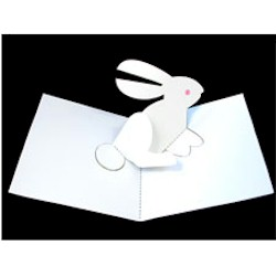 Rabbit Pop UP Craft