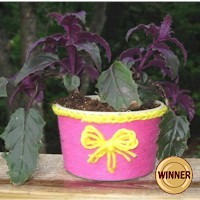 Butter Tub Planter Craft