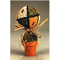 Seed Topiary Craft