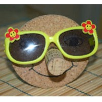 Recycled Sunglasses Holder - Kids Crafts