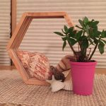 Craft Stick Hexagon Shelf or Frame