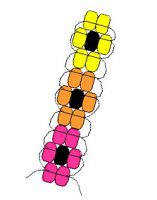 Image of Pony Bead Pencil Pattern