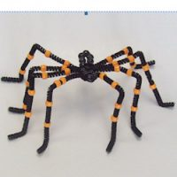 Image of Paper Plate Spider