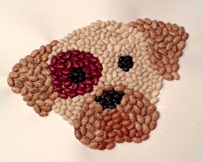 Dog Bean Mosaic