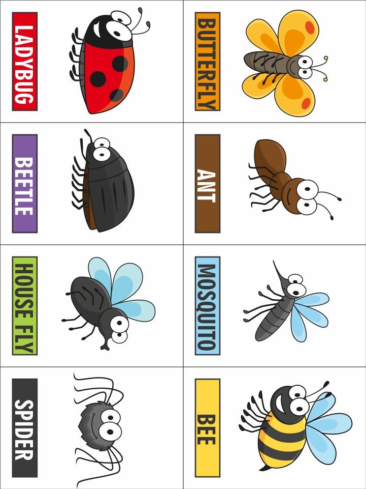 bug-game-printable