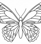 butterfly-fan-craft-pattern