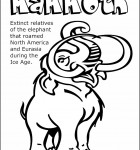 color-mammoth