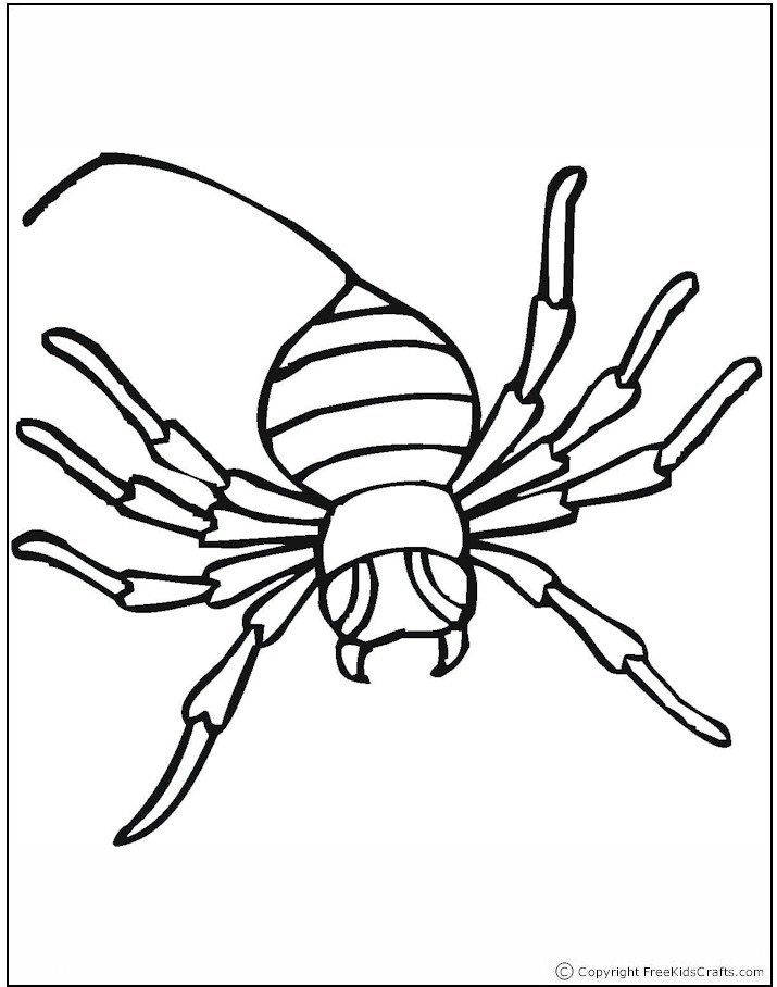 coloring-page-spider