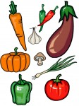 cornucopia_vegetables_color