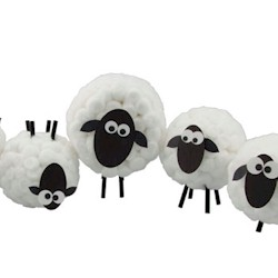 Cottonball Sheep