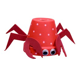 Flower Pot Crab