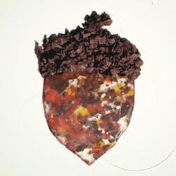 Image of Crayon Acorn