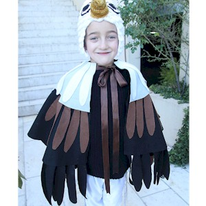 Make An Eagle Costume