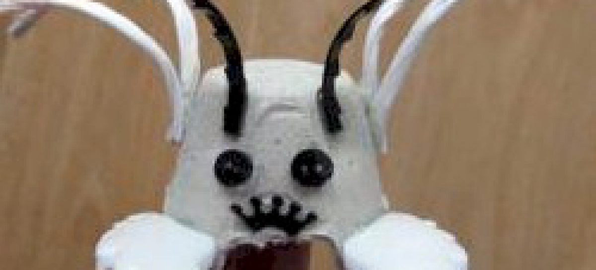 Egg Carton Litter Bug Free Kids Crafts