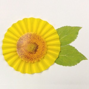 Image of Fan Fold Paper Sunflower