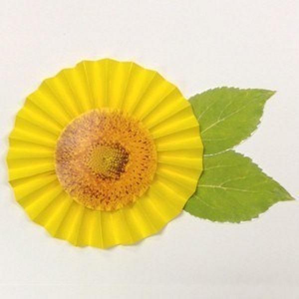 Fan Fold Paper Sunflower