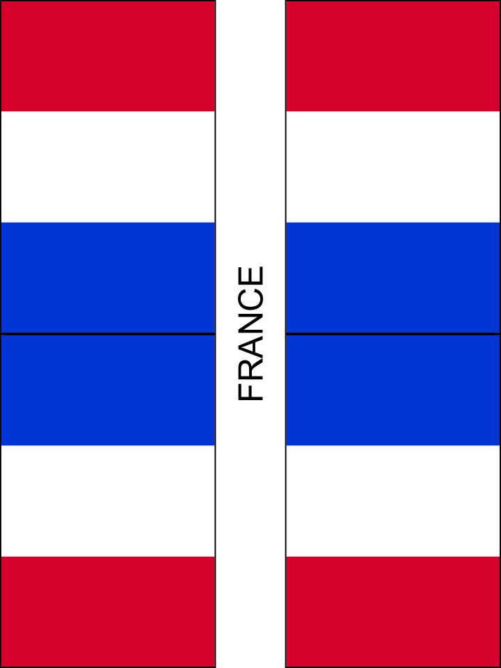 It is a photo of Fan Printable French Flag