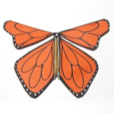 Image of Fluttering Monarch Butterfly
