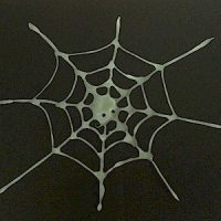 Image of Pop Up Spider
