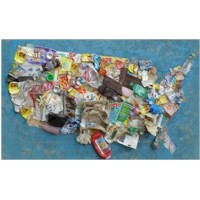 Image of Collage Litter Map