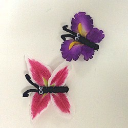 Image of Magnetic Flower Butterflies