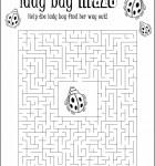 maze-summer