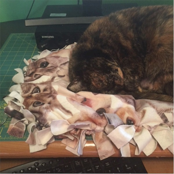 Cat Pillow Project