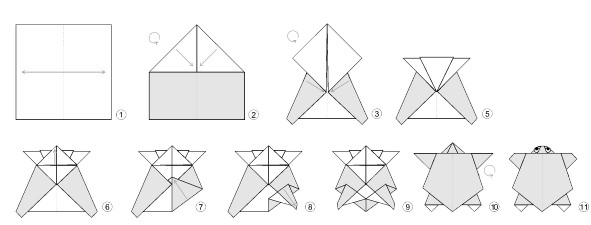 Step Step Instructions How To Make Origami Turtle Stock ... | 225x591