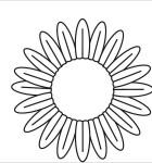 pattern-flower