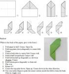 pattern-parakeet