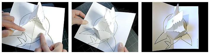 pattern-shark-a5-08
