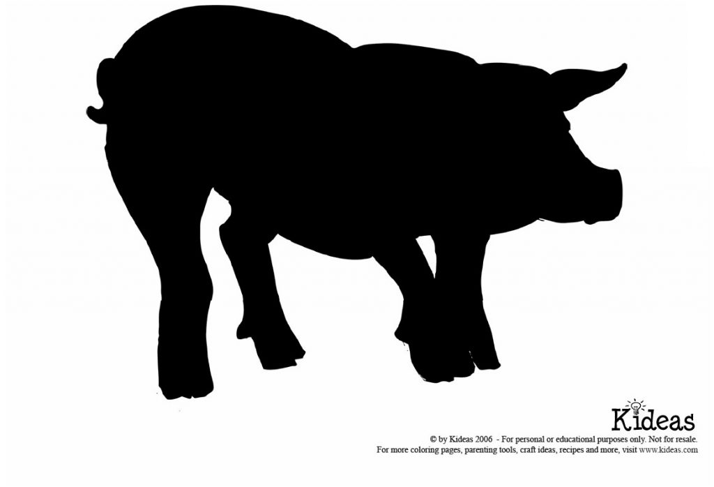 pig-shadow-pattern