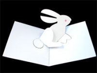 Image of Rabbit Pop UP