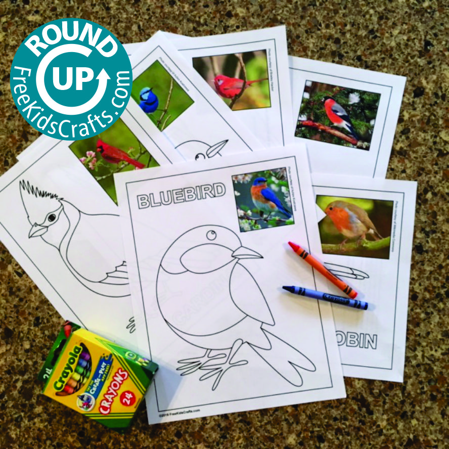 Round up of easy bird crafts for young children