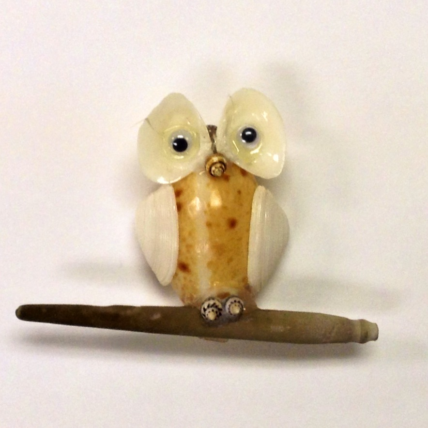 Sea Shell Owl