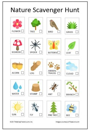 Printable page showing things we find in nature in the summer.