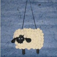 Image of Wooly Australian Sheep